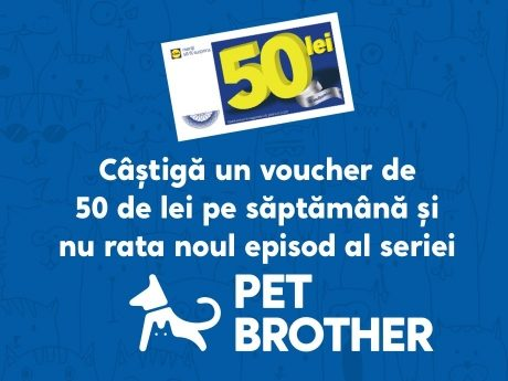 Pet Brothers